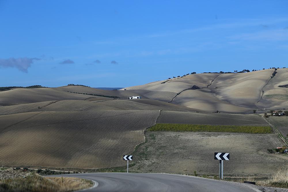 estrada6