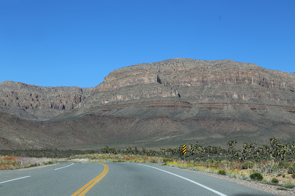 grand canyon21