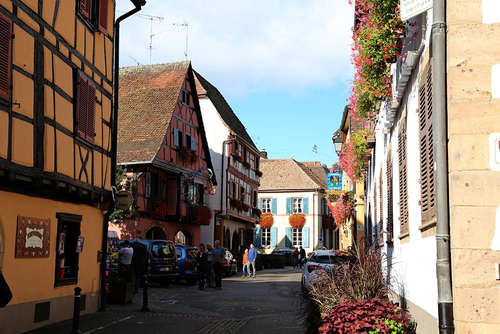 eguisheim 7
