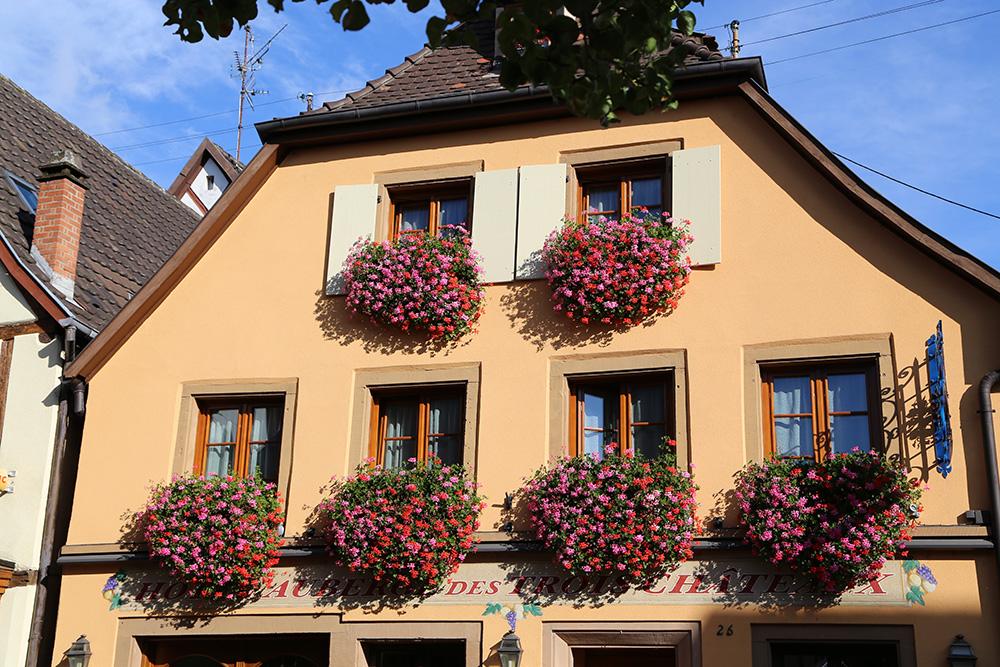 eguisheim 8