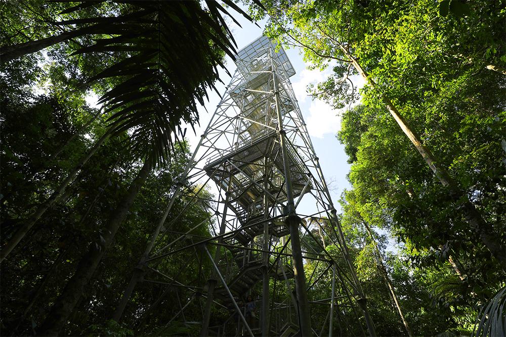 Museu da Amazônia, em Manaus
