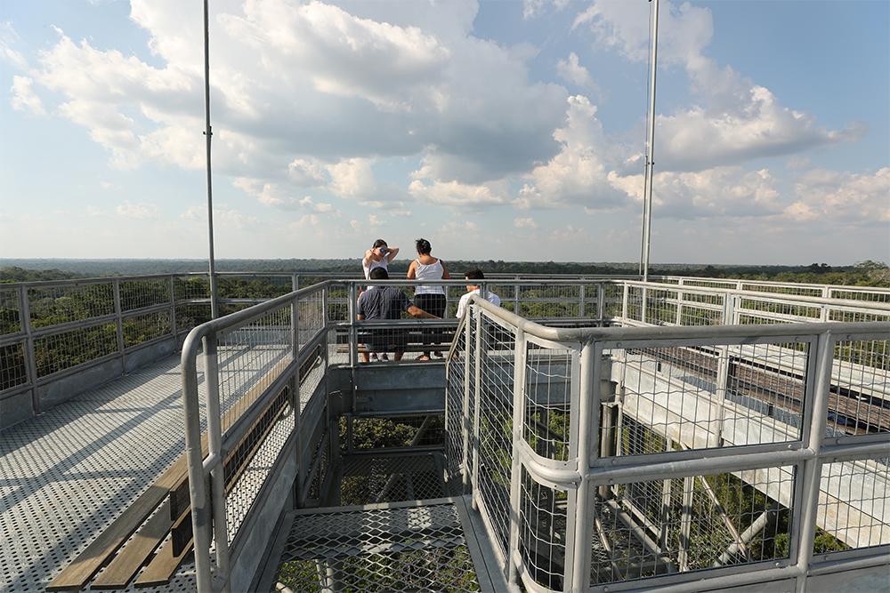 alto torre musa