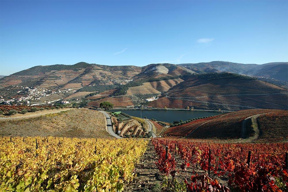 A Quinta dos Murças, no Douro