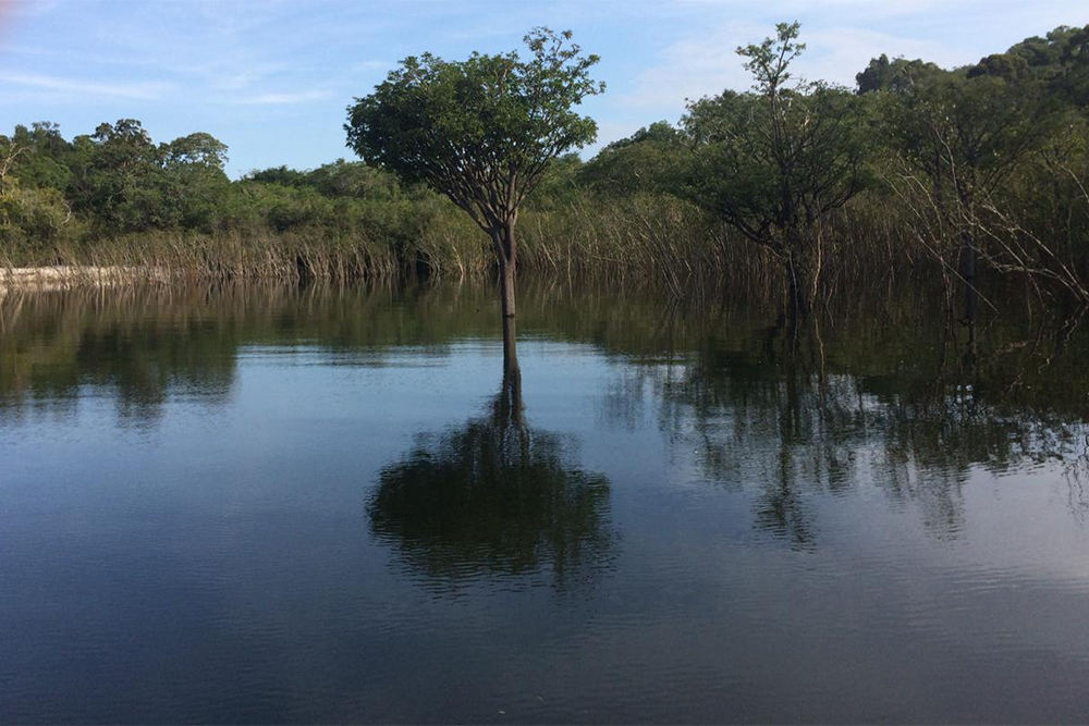 Rio Uaicurapá, em Parintins