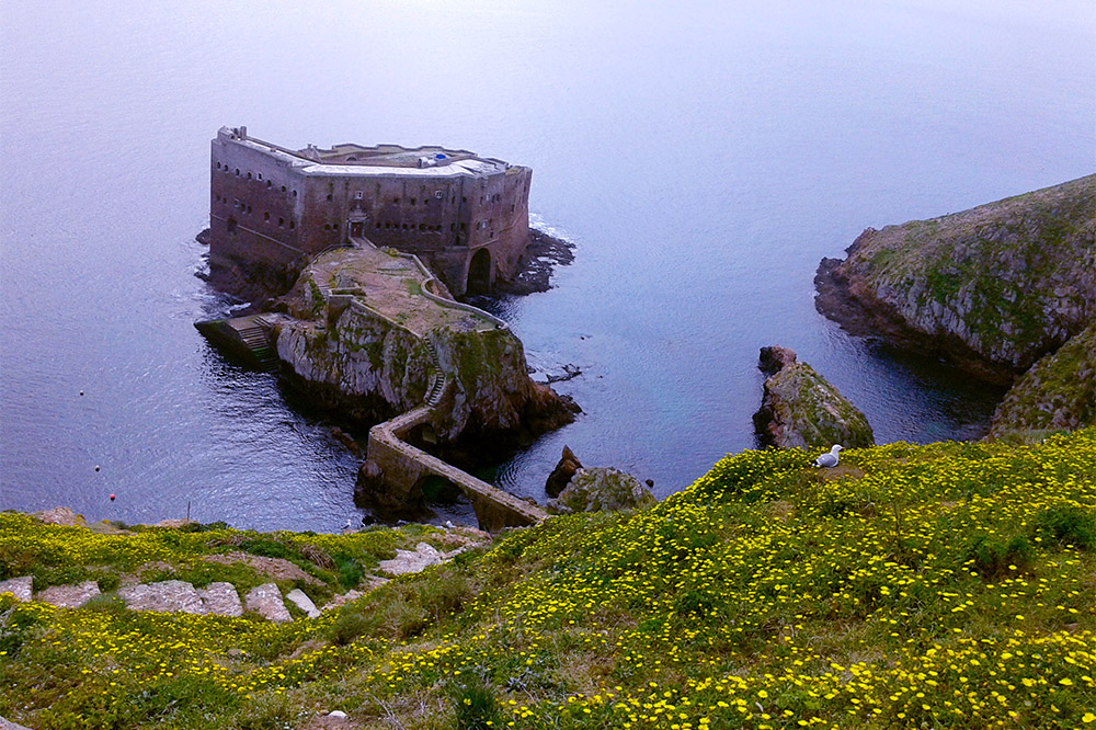 Arquipélago das Berlengas, em Portugal