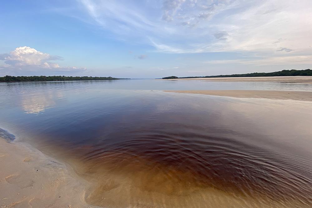 A paradisíaca praia do Camaleão, em Novo Airão