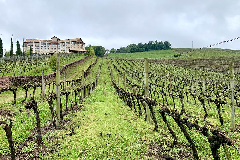 SPA do Vinho, Vale dos Vinhedos