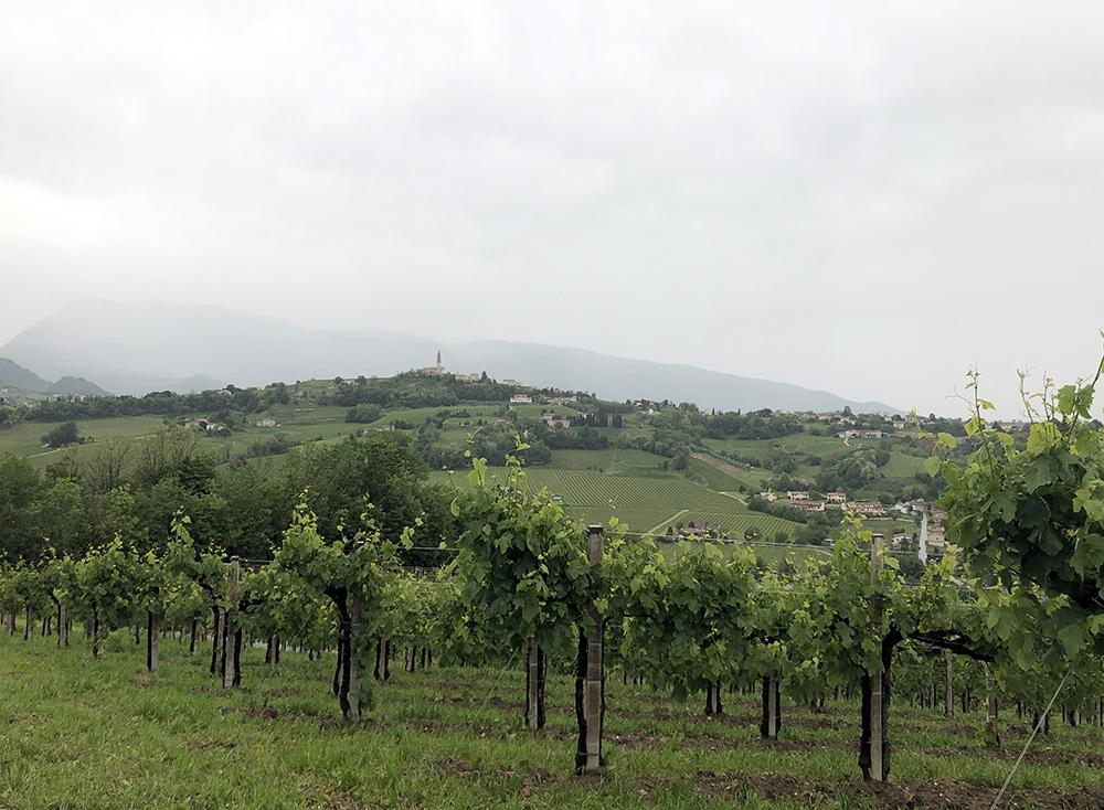 Roteiro pelas Colinas do Prosecco, na Itália
