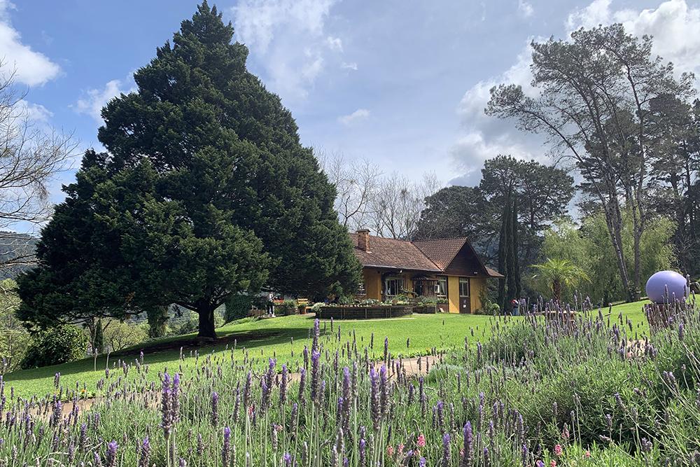 Le Jardin: parque de lavandas em Gramado