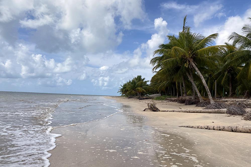 São Miguel dos Milagres: praias paradisíacas e piscinas naturais na Costa dos Corais