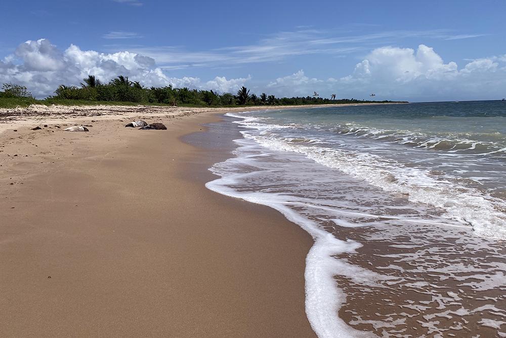 São Miguel dos Milagres, em Alagoas