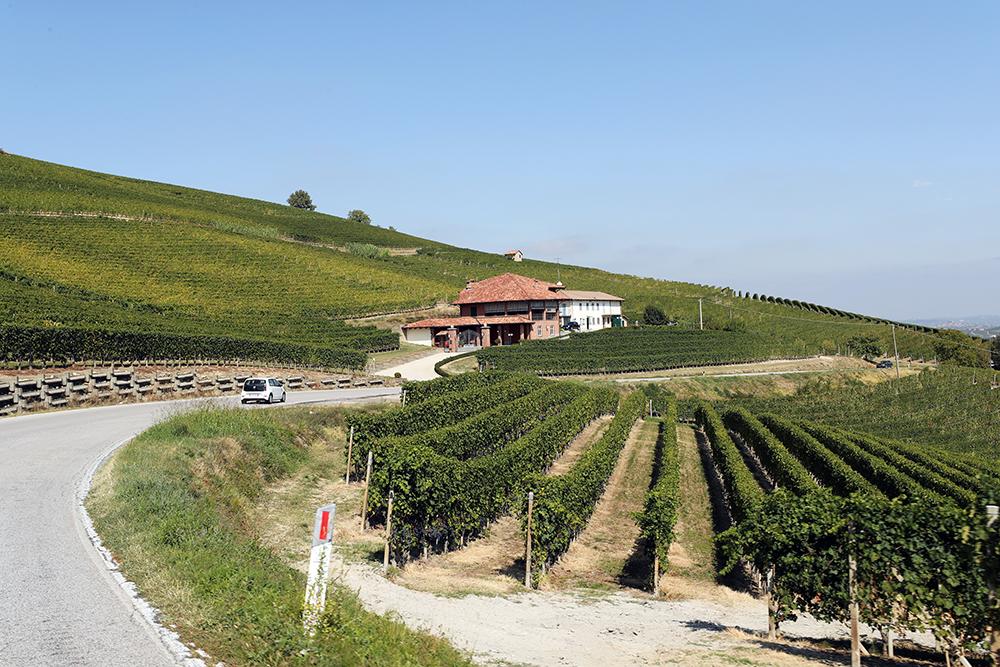 Veja o que fazer no Piemonte, Itália