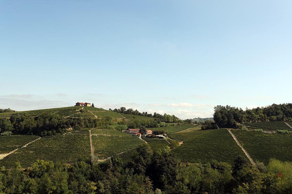 Entre vinhos e trufas, um roteiro para conhecer as belezas do Piemonte, na Itália