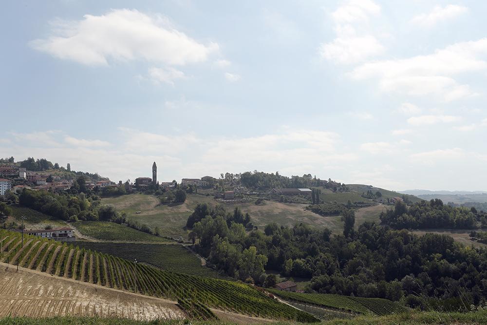 Roteiro pelo Piemonte: entre vinhos e trufas na Itália